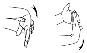 Stretching - Wrist Mobility at Your Workstation